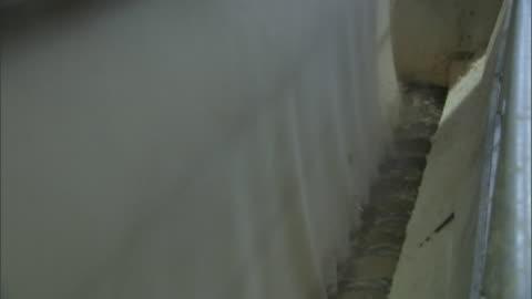 stockvideo's en b-roll-footage met a screw drive machine helps produce pulp. - verwerkingsfabriek