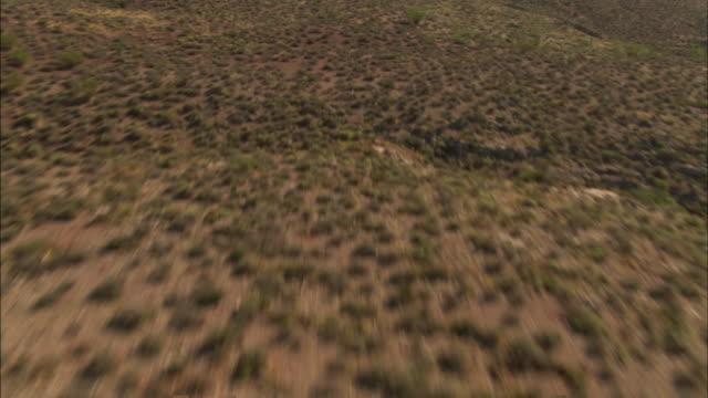 scrub grass and shrubs cover a plateau above a colorado river gorge. - colorado plateau stock videos & royalty-free footage