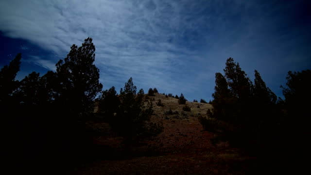 scrub hillside western juniper sagebrush under moonlight shadows move silhouette 1 - oregon us state stock videos & royalty-free footage