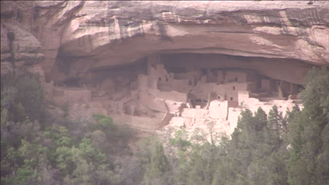 scrub trees and bushes surround mesa verde national park's cliff palace. - mesa verde nationalpark stock-videos und b-roll-filmmaterial