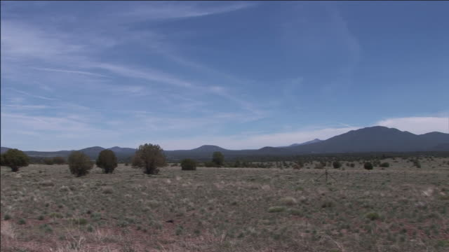 scrub trees and dry grass skirt volcano ridge near flagstaff, arizona. - shrubland stock videos & royalty-free footage