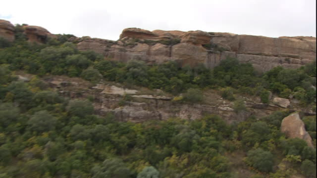 scrubby bushes cover a rocky plateau in south africa. - bush stock videos & royalty-free footage