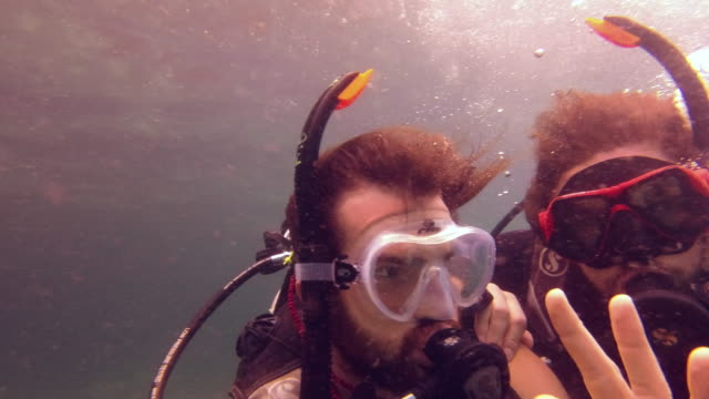 scuba buddies make the best buddies - underwater diving stock videos & royalty-free footage