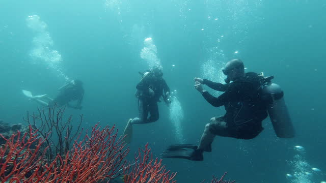 scuba dive leader guiding beginner divers underwater - andaman sea stock videos & royalty-free footage