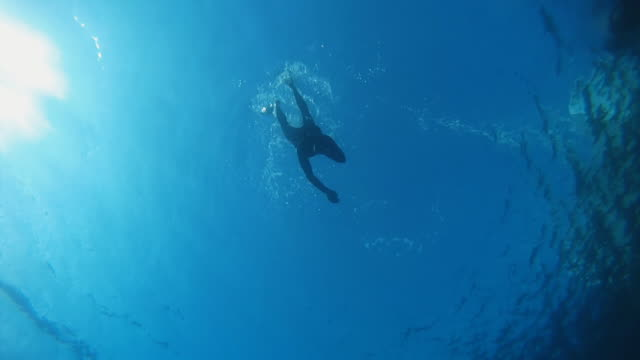 HD SLOW MOTION: Scuba Diver Approaching The Camera