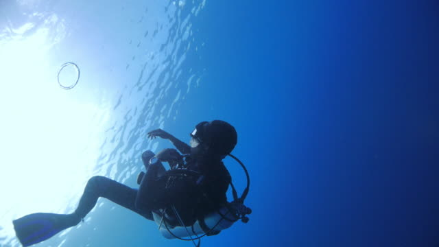 stockvideo's en b-roll-footage met scuba diver waait bubble-ringen - scubaduiken