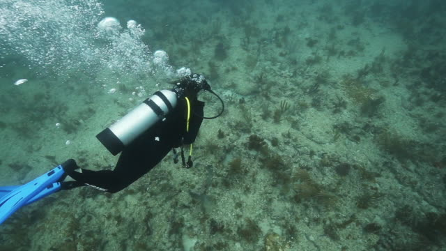 Scuba diver blows air from breathing apparatus, underwater shot