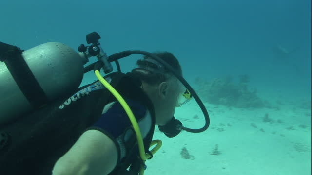 a scuba diver explores the bottom of the red sea where artifacts lie in the sand. - 古代の遺物点の映像素材/bロール
