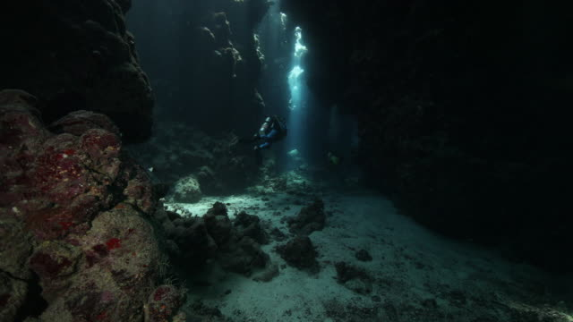 a scuba diver exploring a cavern at st johns reef in egypt - sea life stock videos & royalty-free footage