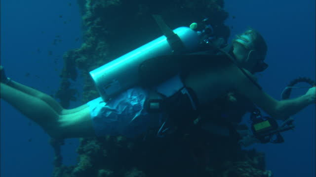 a scuba diver films a shipwreck on the palau reef. - aqualung diving equipment stock videos & royalty-free footage