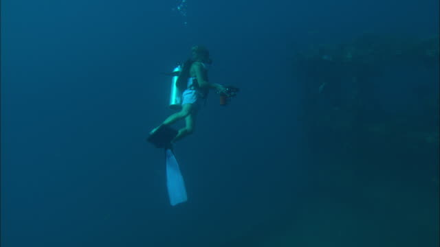 a scuba diver films a shipwreck. - shipwreck stock videos & royalty-free footage