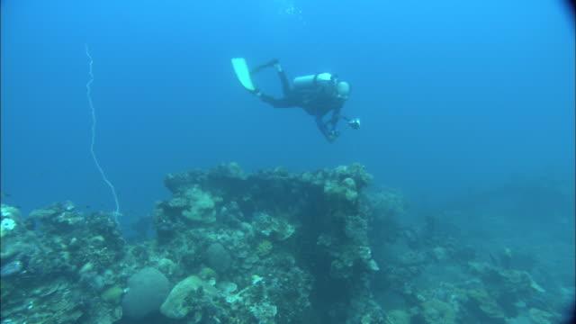 a scuba diver films a world war ii shipwreck. - postwar stock videos & royalty-free footage