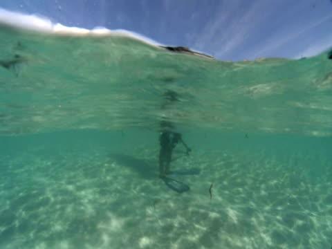 scuba diver in shallow water, swims off, house reef, dimakya island, coron, the philippines - muoversi in una direzione video stock e b–roll