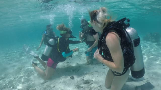 scuba diver instructor during a diving course checks diver skills underwater - rarotonga stock videos & royalty-free footage