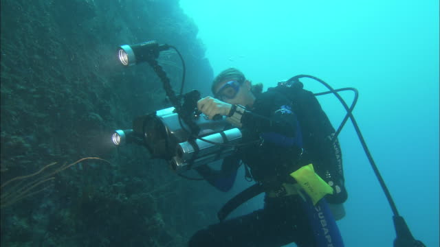 a scuba diver photographs a shipwreck on the palau reef. - vrak bildbanksvideor och videomaterial från bakom kulisserna