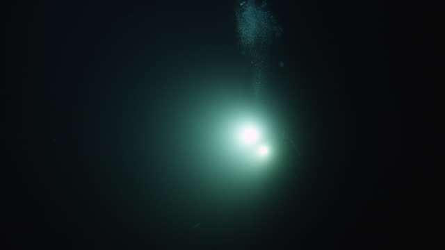 """scuba diver shines lights underwater at night, norway - """"bbc natural history"""" stock videos & royalty-free footage"""