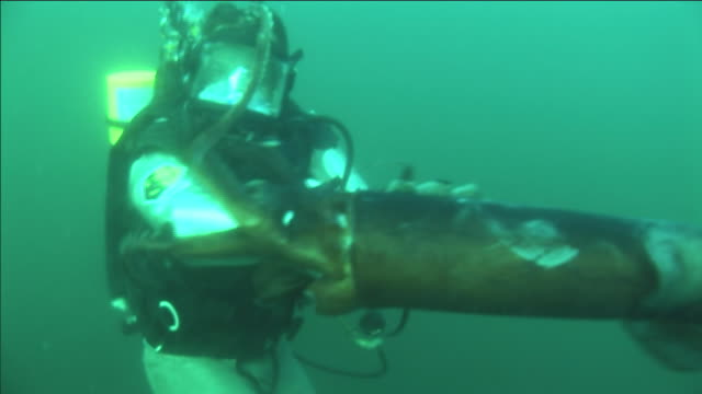 a scuba diver struggles with a humboldt squid. - tentacolo video stock e b–roll