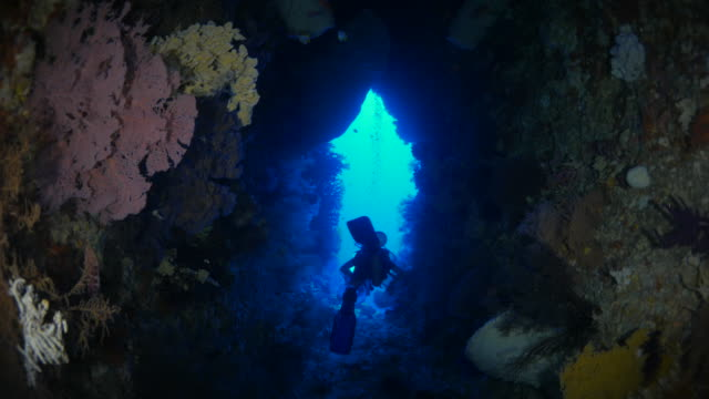 vídeos de stock, filmes e b-roll de mergulhador, natação, caverna submarina - deep sea diving