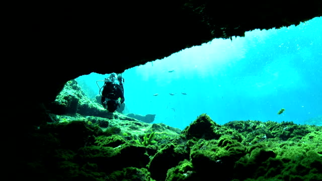 a scuba diver swims into a shadowy underwater grotto at silver springs, florida. - grotto cave stock videos and b-roll footage