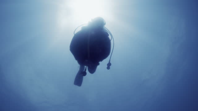 scuba diver swims over camera - aqualung diving equipment stock videos & royalty-free footage