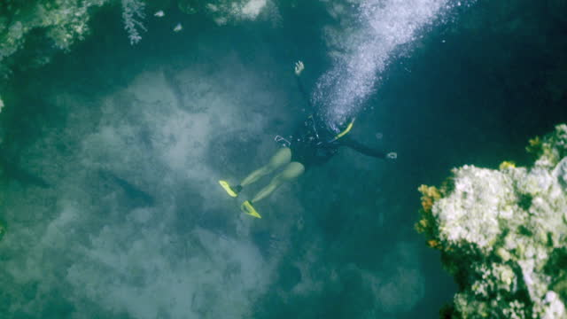 a scuba diver with yellow fins lets up a steady stream of bubbles gently treading water in a coral reef crevice - banda, indonesia - crevice stock videos & royalty-free footage