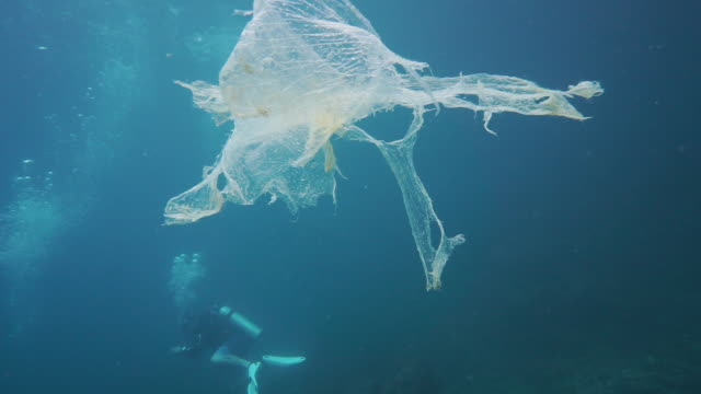 scuba divers dwarfed by underwater plastic pollution - ross sea stock videos & royalty-free footage