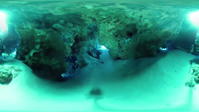 'Scuba Divers explore the waters off Cancun Mexico'