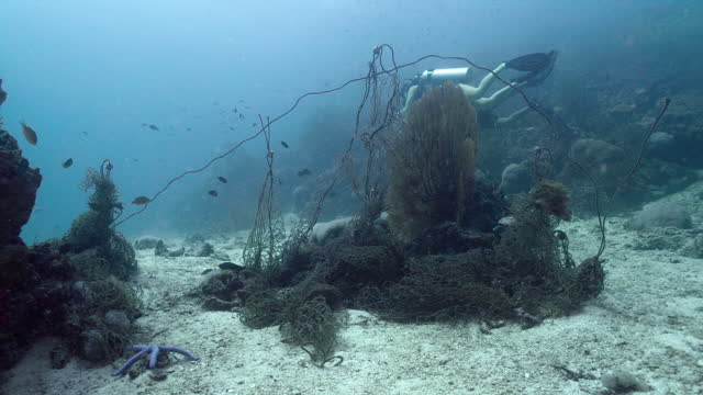 scuba divers near tangled ghost net underwater - andaman sea stock videos & royalty-free footage