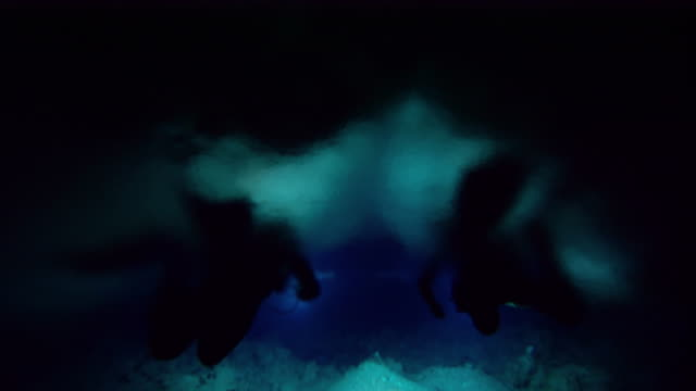 stockvideo's en b-roll-footage met scuba divers swim through a cenote cave, yucatan, mexico. available in hd. - duikfles