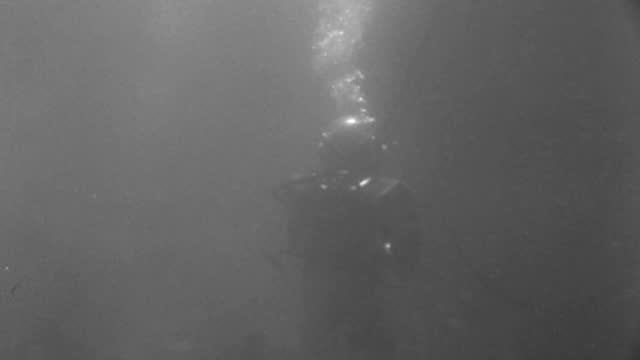 vídeos de stock e filmes b-roll de underwater - scuba divers underwater - c.u. a diver with electric torch walking to b.g. - b&w. - capacete