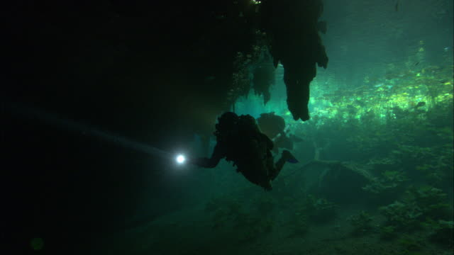 scuba divers use searchlights as they swim beneath an underwater rock formation. - land stock videos & royalty-free footage
