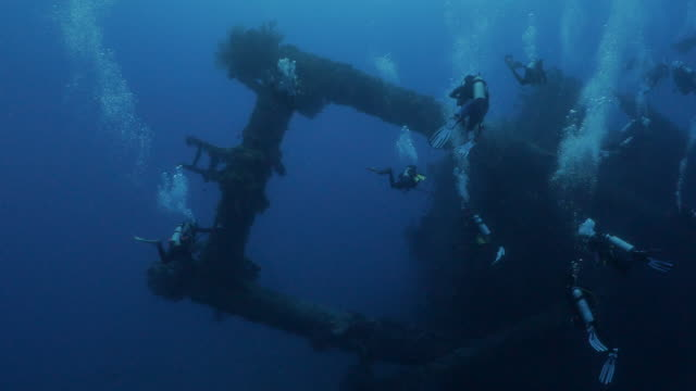 scuba diving at deep sea shipwreck in orchid island, taiwan - philippine sea stock videos & royalty-free footage