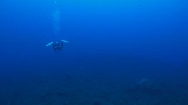 Tauchen, große blaue Meer
