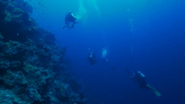 Duiken in de koraalriffen van Apo Reef, Filipijnen (4K)
