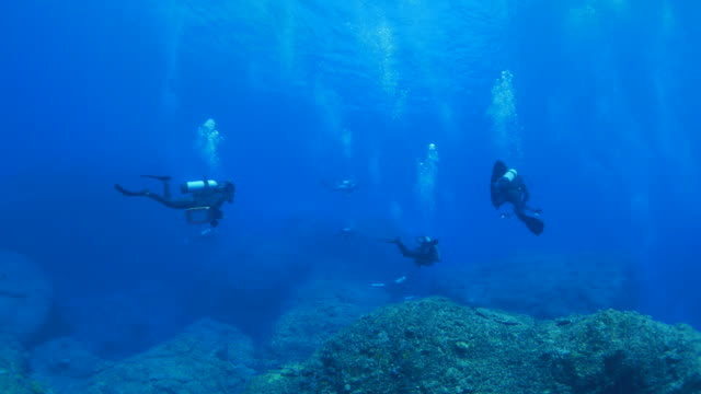 Scuba diving in Japan undersea