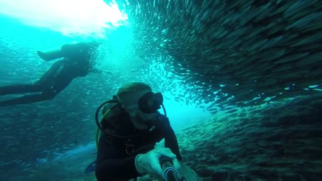 vídeos y material grabado en eventos de stock de scuba diving in the galapagos is the best experience the volcanic topography makes home to many species of wildlife above and below the waves... - escafandra autónoma