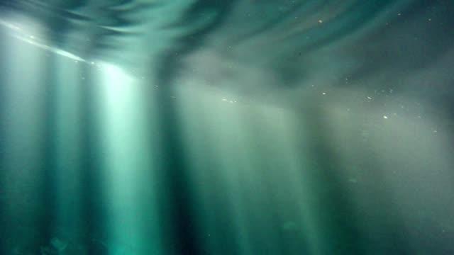 vídeos de stock, filmes e b-roll de mergulho no oceano pacífico com raios brilhantes de luz - prendendo a respiração