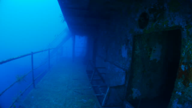 scuba diving inside the shipwreck - shipwreck stock videos & royalty-free footage