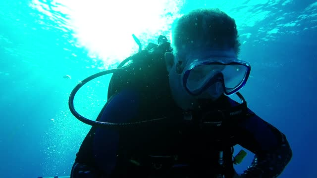 scuba diving is an exciting experience, especially when you are in a world as beautiful as the cayman islands. the sand is white, the water is... - aqualung diving equipment video stock e b–roll