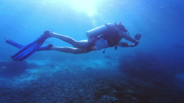 scuba diving is my therapy - circular strobe stock videos and b-roll footage
