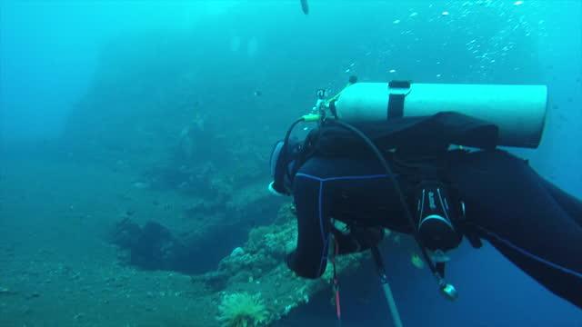 vídeos de stock e filmes b-roll de scuba diving through ship wreck and around marine life - aqualung diving equipment