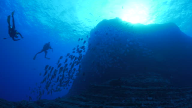 Scuba diving, undersea rock, school of trevally