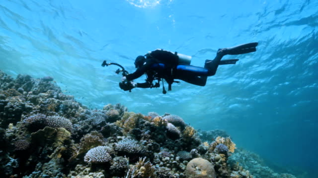 scuba diving - aqualung diving equipment stock videos & royalty-free footage