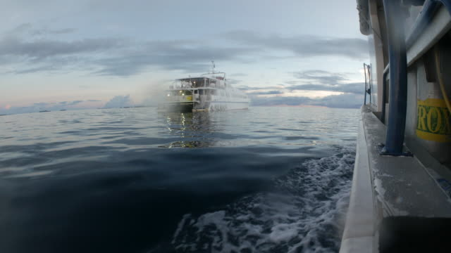 scuba liveaboard boat on sea at sunset - motorboat stock videos and b-roll footage