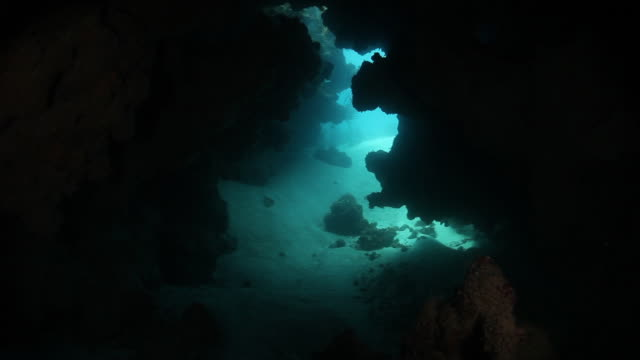 Scuba POV, swimming through Bermuda underwater cave