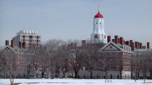 scullers row past the buildings of harvard university on the charles river. - river charles stock videos & royalty-free footage