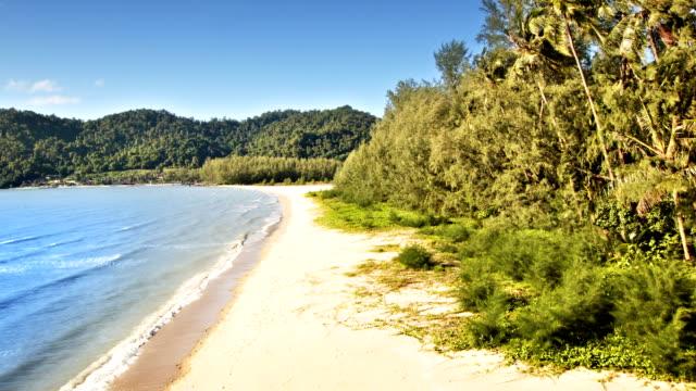 meer und kokospalmen - karibisches meer stock-videos und b-roll-filmmaterial