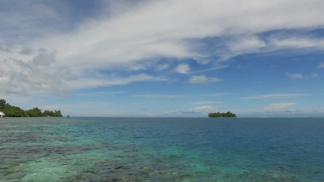 sea and island covered with tropical vegetation - polynesian culture stock videos and b-roll footage