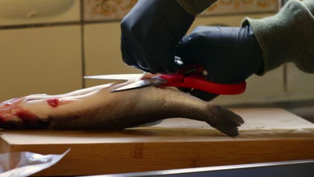 Sea bass preparation
