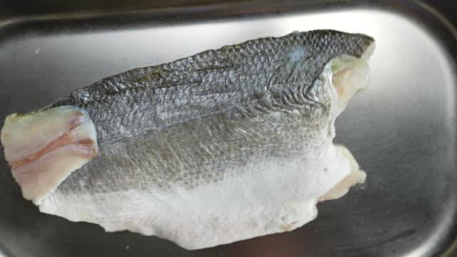 sea bass - sea bass stock videos & royalty-free footage